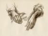 Handen, studie